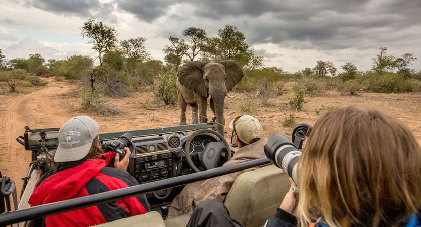 5 Top Tips for an Affordable Luxury Safari