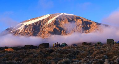 Day trip to Kilimanjaro National Park – Marangu